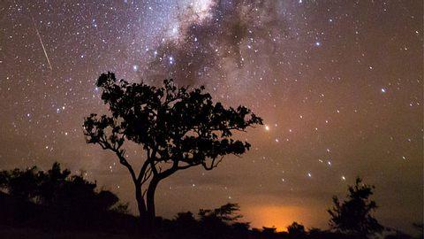 Afrikanisches Horoskop: Dein Geburtszeichen verrät dir, welche geheimen Stärken du hast - Foto: iStock