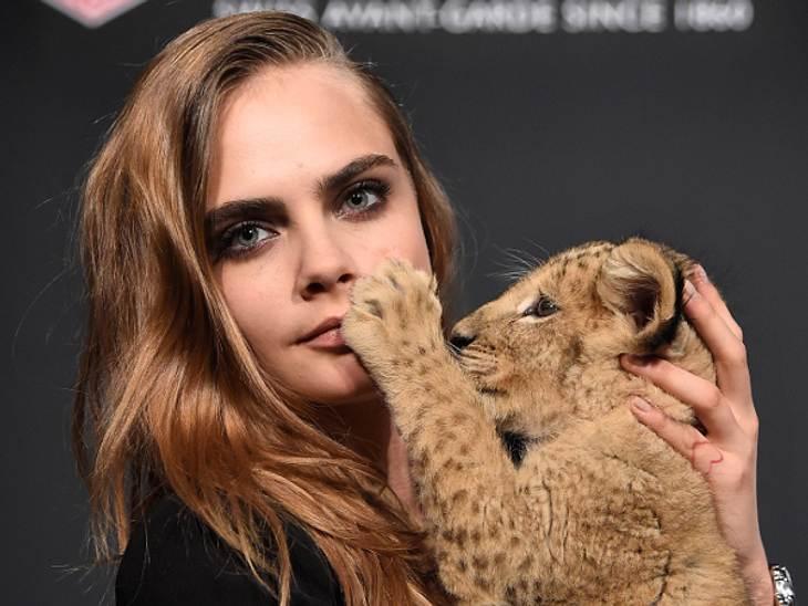 Cara Delevingne will das kleine Löwen-Baby gar nicht mehr hergeben