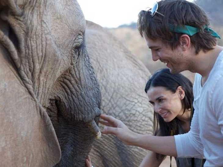 ,Auf einer Safari in Afrika zeigten sich Demi Moore und Ashton Kutcher ganz begeistert mit den einheimischen Dickhäutern.