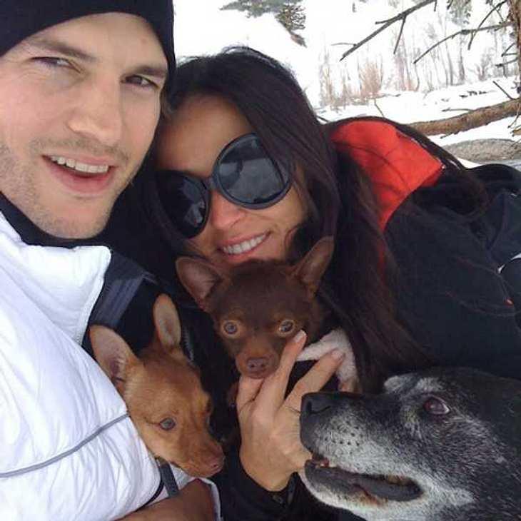 ,Die sieht man das glückliche Pärchen Demi Moore und Ashton Kutcher beim Winterurlaub mit ihrem Hunden.