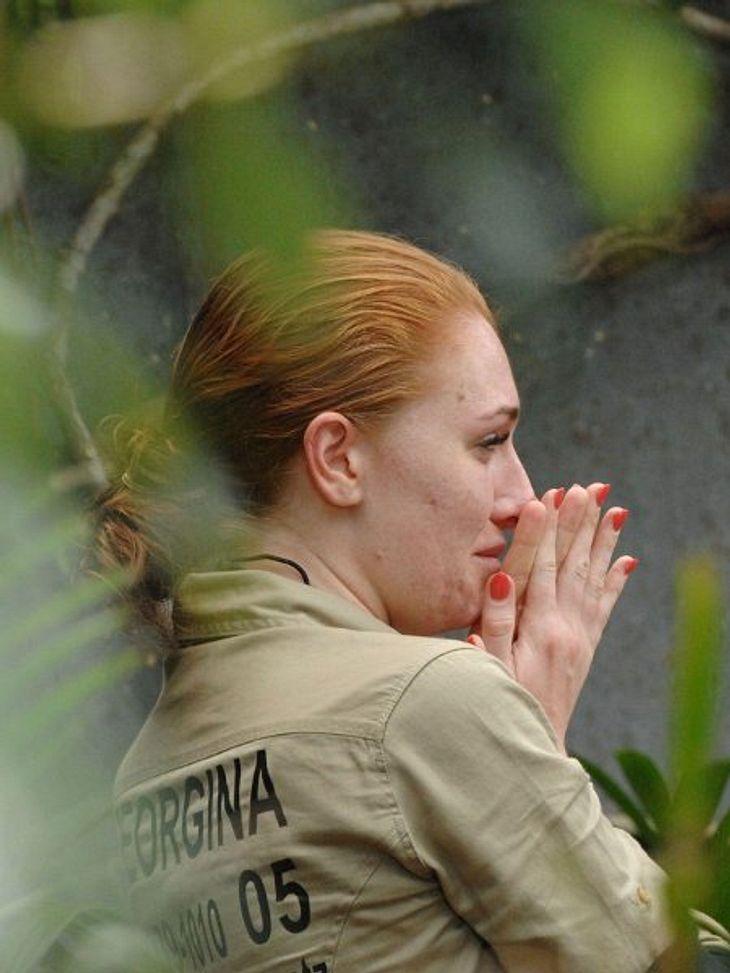 Georgina Fleur - eine einsame Rose im Dschungel??