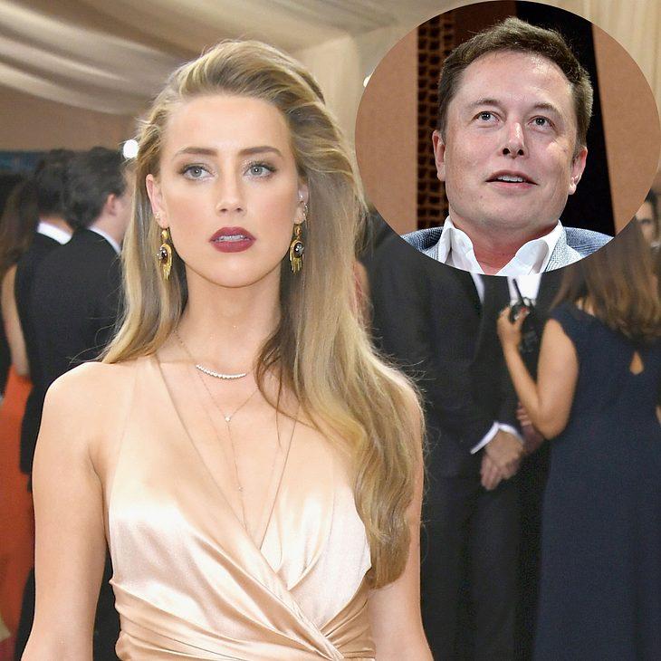 Amber Heard: Tröstet Millionär Elon Musk sie nach der Scheidung von Johnny Depp?