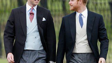 Prinz William & Harry lassen eine Diana-Statue errichten