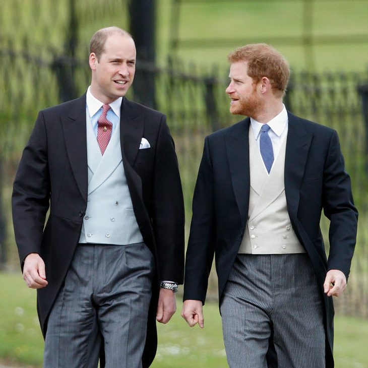 Prinzessin Diana wäre stolz auf ihre Söhne