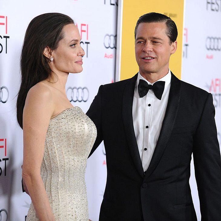Angelina Jolie & Brad Pitt: Versöhnung!