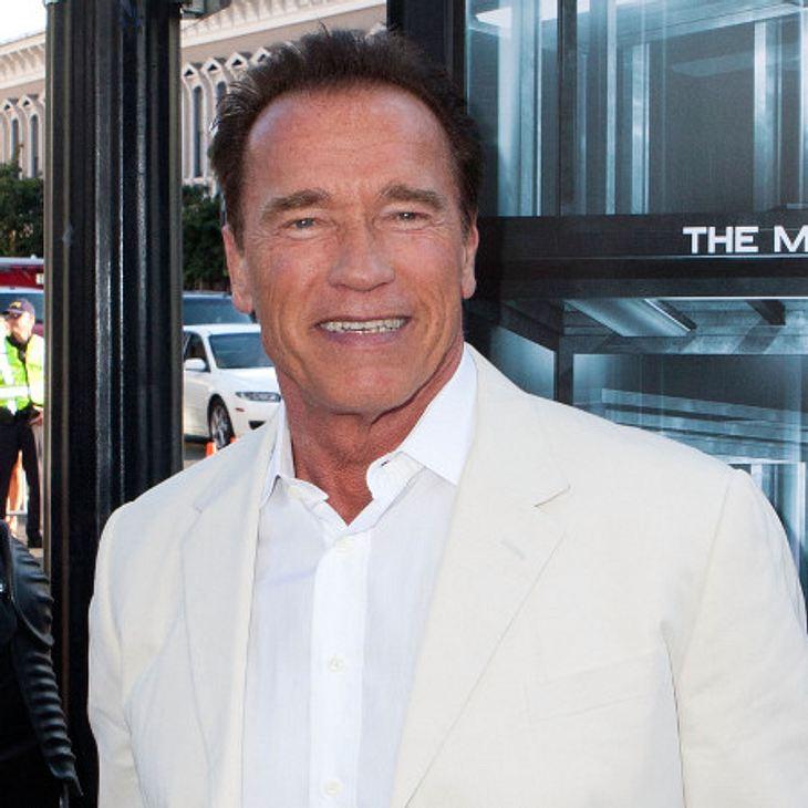 Arnold Schwarzenegger ist frisch verliebt.