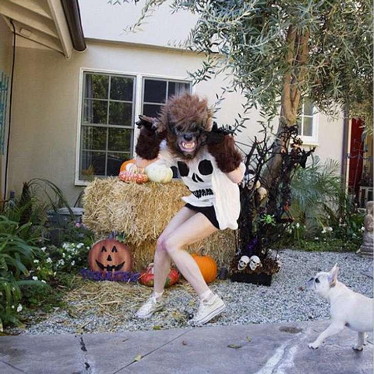 Schaurig schön: Stars im Halloween-WahnSängerin Ashlee Simpson (28) übt schon mal den schaurigen Werwolf-Angriff. Hoffentlich wird der noch furchteinflößender. Ihr Hund scheint nämlich nicht sonderlich beeindruckt von den Grusel-Qualitäten