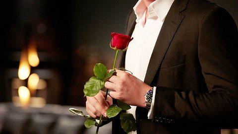 Bachelor - Foto: MG RTL D / Arya Shirazi
