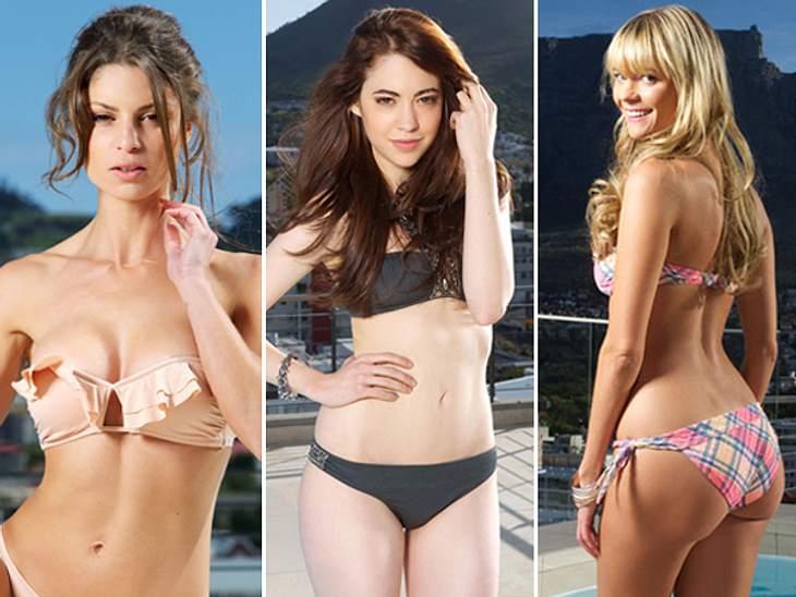 """""""Bachelor 2013"""": Bikini-Rätsel der Kandidatinnen - Wer ist das Playmate?Ab dem 2. Januar 2013 buhlen 20 Kandidatinnen um das Herz den neuen Bachelors.Worauf sich nicht nur der heiß Umworbene, sondern auch die TV-Zuschauer freuen k"""