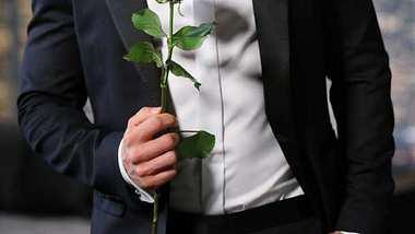 Bachelor-Voting: Wer ist euer Favorit? - Foto: RTL