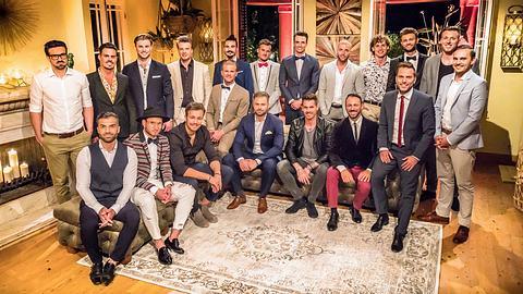 Bachelorette 2018 Kandidaten - Foto: MG RTL D / Arya Shirazi