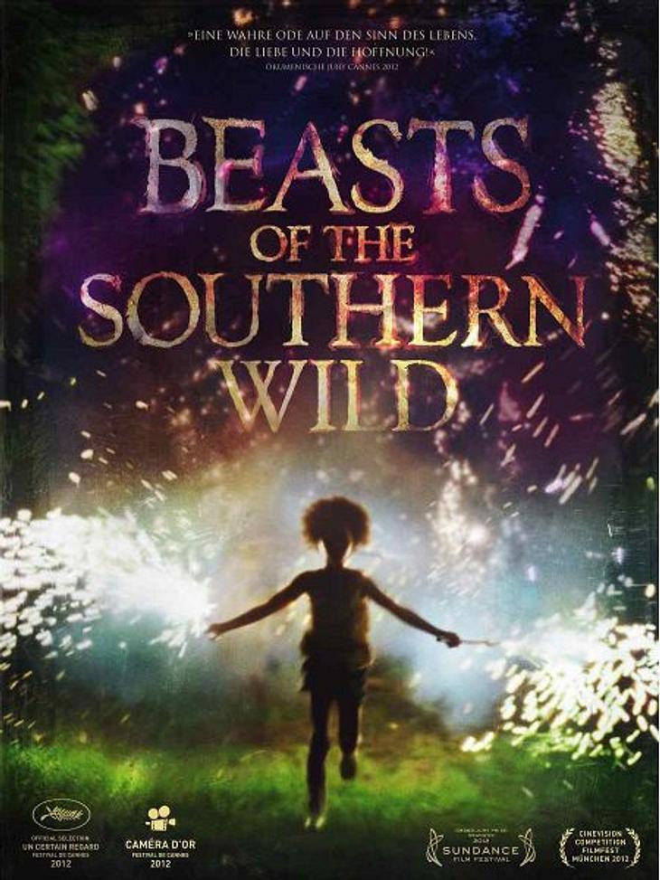 """Die Oscar-Filme 2013""""Beast of the Southern Wild"""" wurde ausschließlich mit Laiendarstellern besetzt und glänze bei zig Festivals als bester Film. """"Magische, realistische Fabel"""" heißt es von Kritikern. Es geht um die klein"""