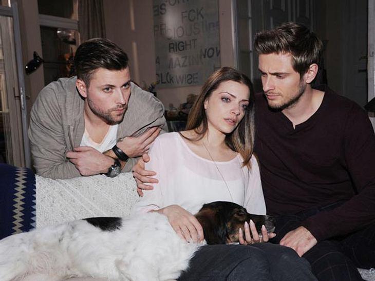 Bolle muss eingeschläfert werden. Ein tierisches Drama bei John, Emily und Philipp