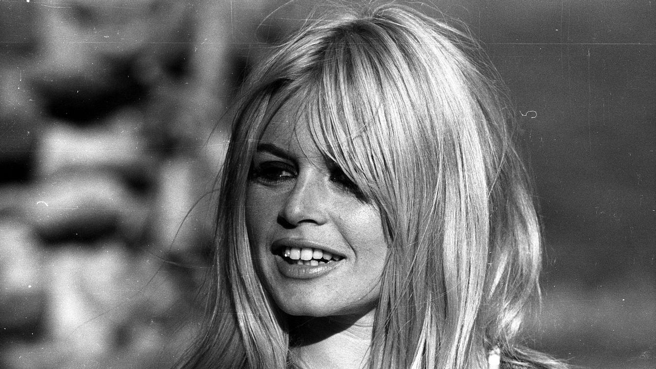 Brigitte Bardot früher