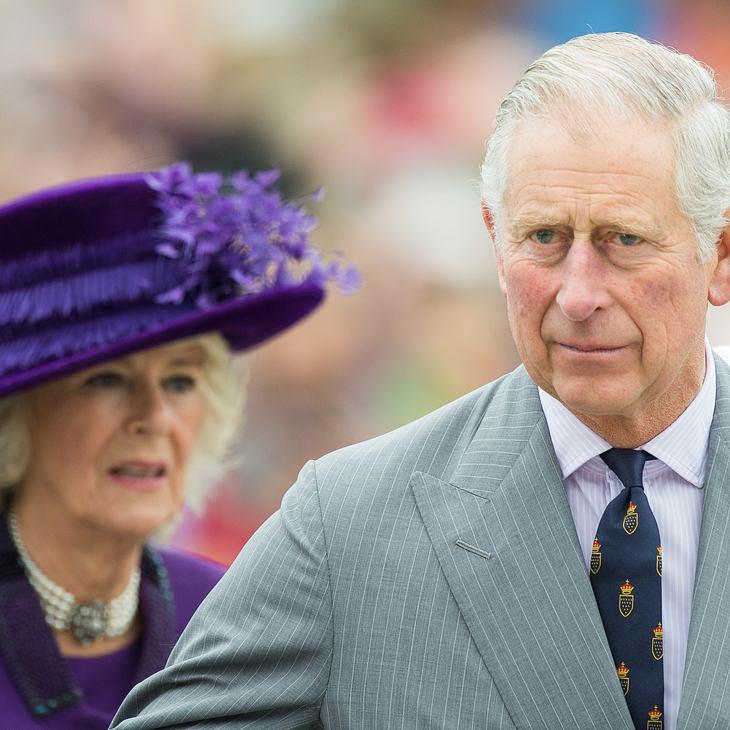 Haben Charles und Camilla einen unehelichen Sohn?