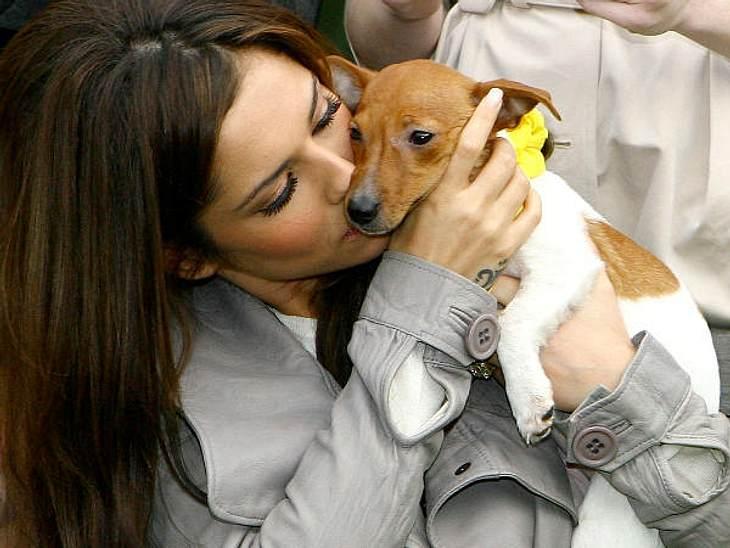 Stars und ihre HundeOh, wie niedlich: Die Stars sind ganz verliebt in ihre Hunde und knutschen sie bei jeder Gelegenheit ab. Aber wer kann es ihnen verdenken, wenn man die süßen Fellknäuel sieht.Wir zeigen Euch die zauberhaften Momente zwis
