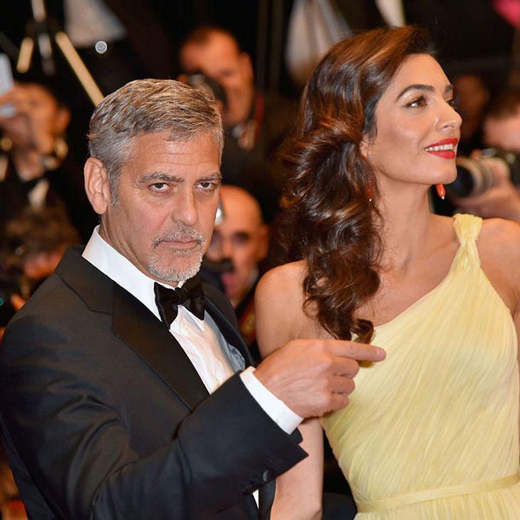 Amal & George Clooney: Schwanger mit Zwillingen?