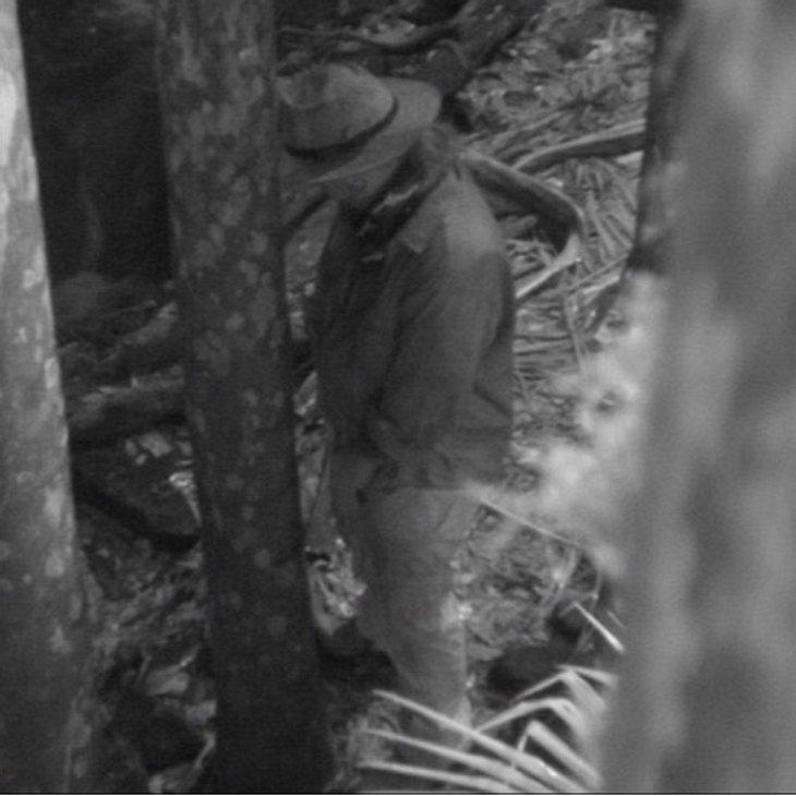 Dschungelcamp 2012 - Die Highlights Erwischt! Martin Kesici  (38) beim nächtlichem Urinieren. Ein schwerer Regelverstoß, da er nicht die vorgesehene Toilette benutzt. Zur Strafe gibt es drei Tage Spüldienst., Alle Infos zu 'Ich bin ein Star