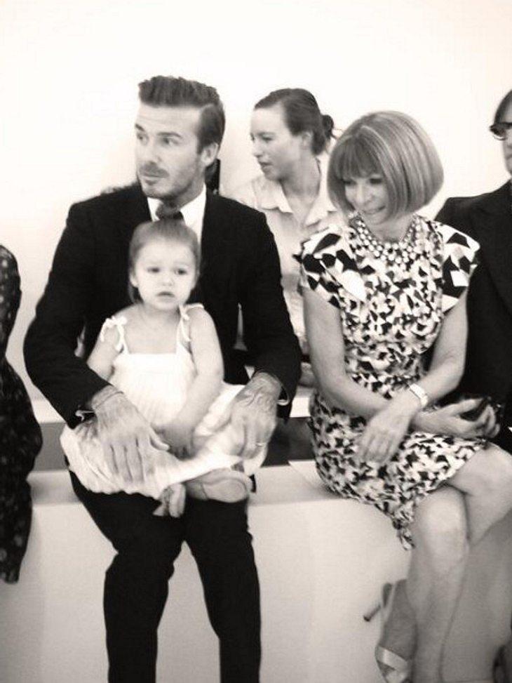 David Beckham mit Harper und Anna Wintour in der ersten Reihe bei der New York Fashion Week