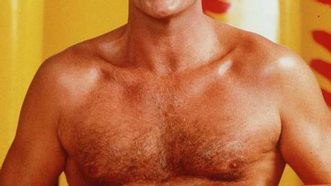David Hasselhoff sollte Indiana Jones spielen - Foto: Getty Images