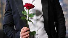 Der Bachelor - Foto: RTL