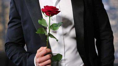 Bachelor 2019: Alle News zur Show! - Foto: RTL