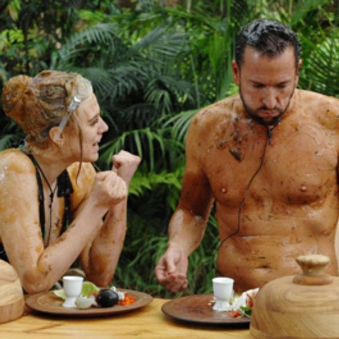Dschungelcamp 2014: In der Dschungelprüfung überrascht Michael Wendler alle!