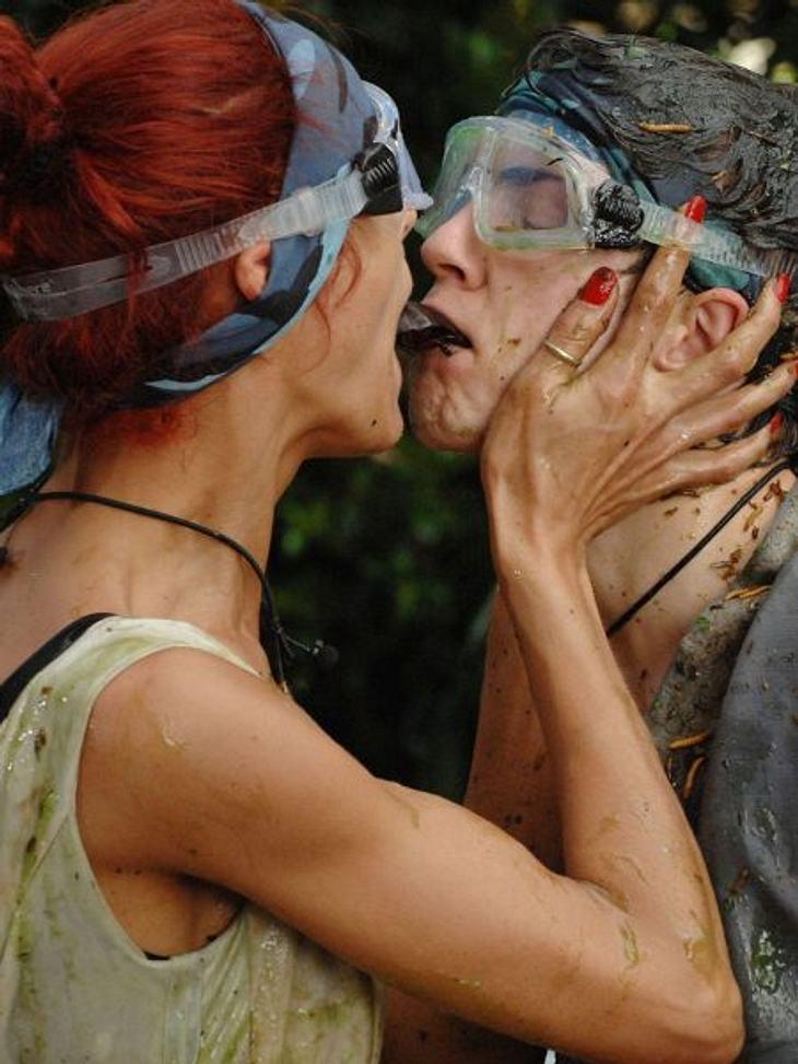 Dschungelcamp 2013Platz 3: Eine echte Dschungel-Lovestory.,