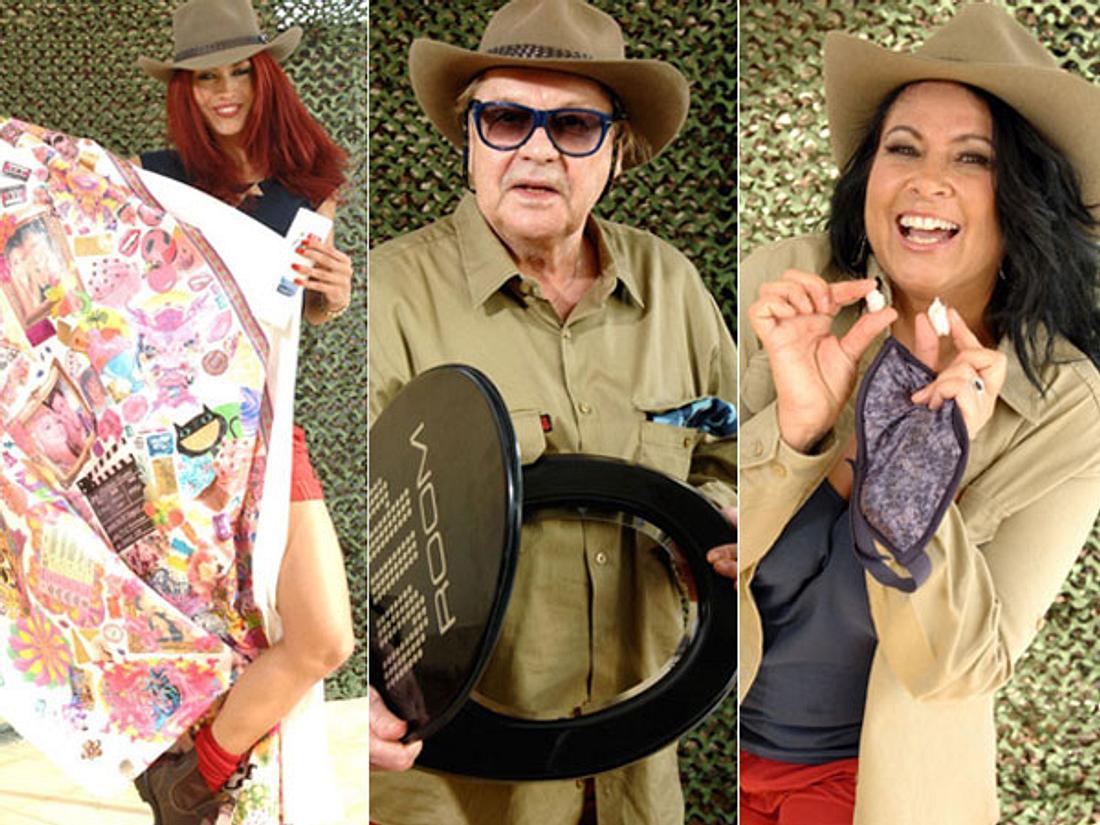 Dschungelcamp 2013: Das sind die Luxusgegenstände der Kandidaten - Bild 1