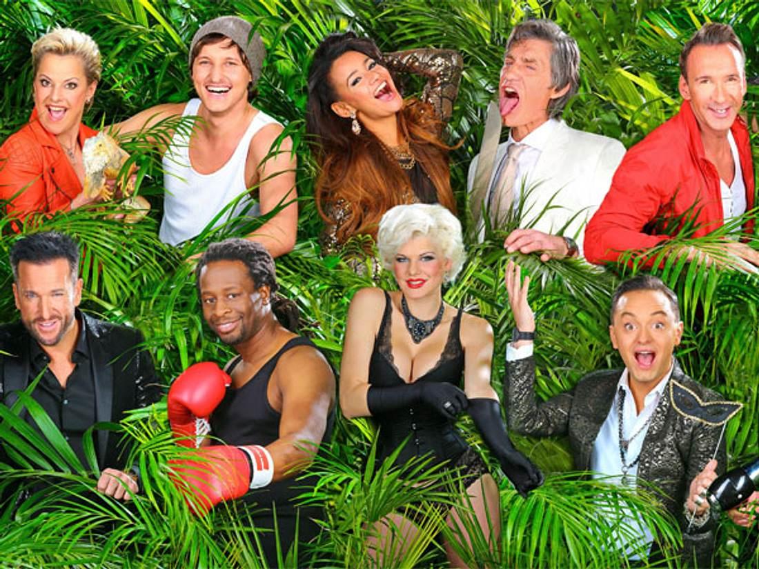 Dschungelcamp 2014: Wer wird Dschungelkönig oder Dschungelkönigin 2014?