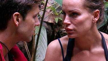 Ist Honey wirklich Schuld am Aus von Gina-Lisa Lohfink?