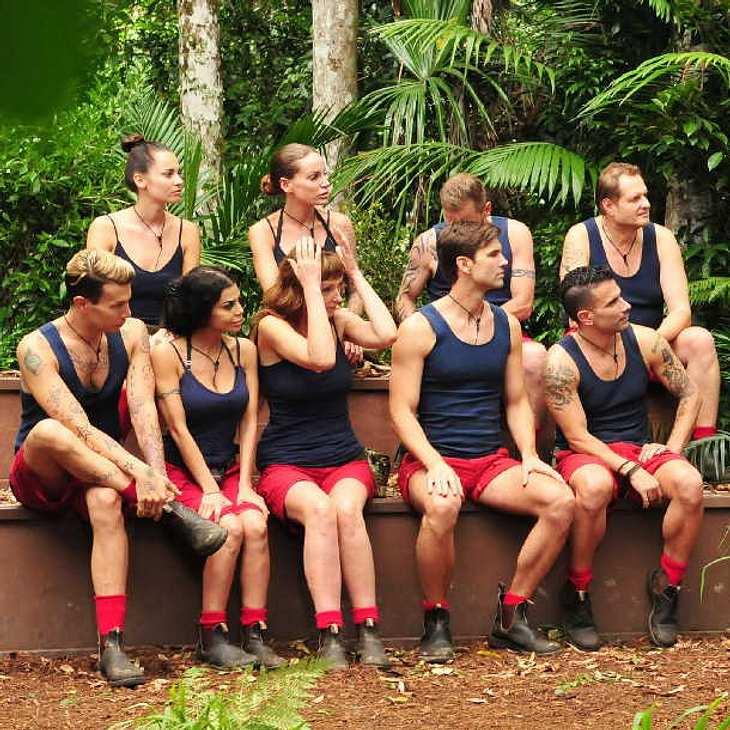 Dschungelcamp 2017: So gefährlich ist die Dschungel-Diät für die Kandidaten!
