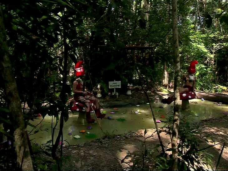 Dschungelcamp Die Spannendsten Fakten Bild 17