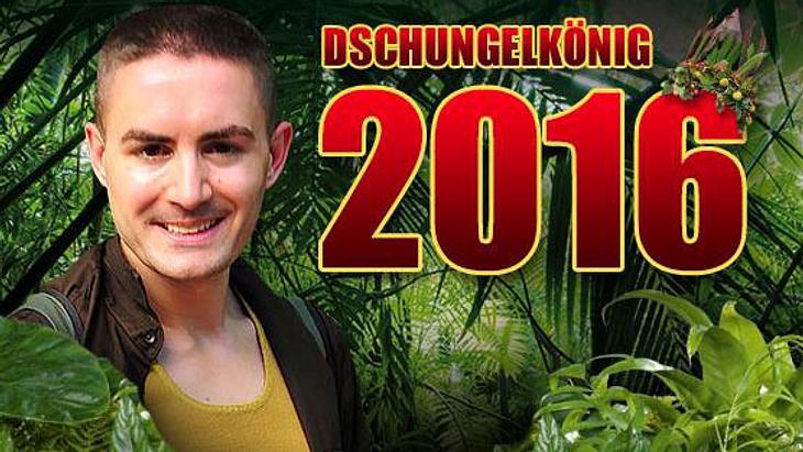 Dschungelcamp Gewinner 2016 Menderes Bagci