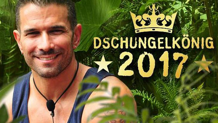 Dschungelcamp Gewinner 2017 Marc Terenzi
