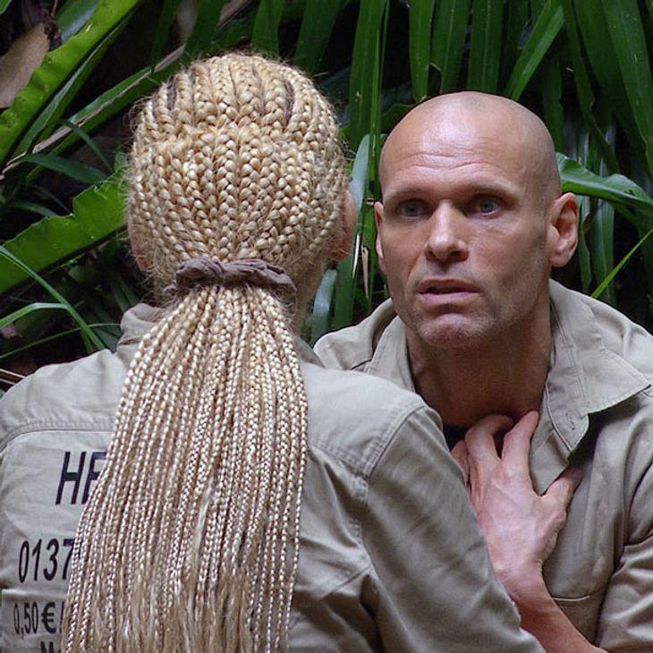 Dschungelcamp: Eskaliert der Zoff zwischen Helena Fürst und Thorsten Legat?