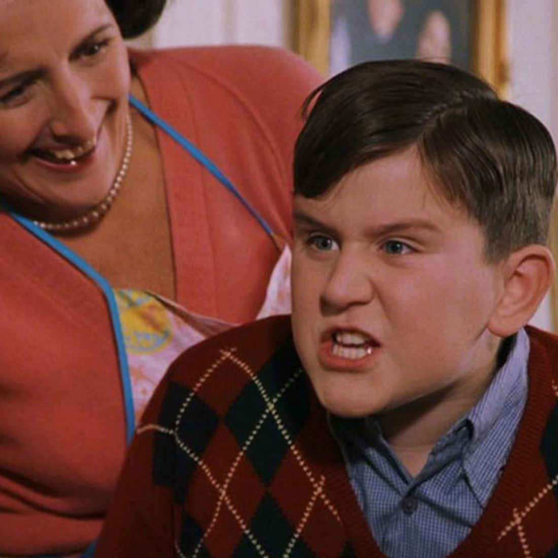 Dudley Dursley - Harry Potter
