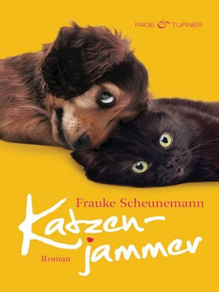 """Frauke Scheunemann: KatzenjammerUnterhaltung, Page & Turner, ca. 14.99Darum geht's in """"Katzenjammer"""": Dackel Herkules hat endlich den richtigen Mann für Frauchen Carolin gefunden. Marc ist Tierarzt und ein echter Hundeverstehe"""