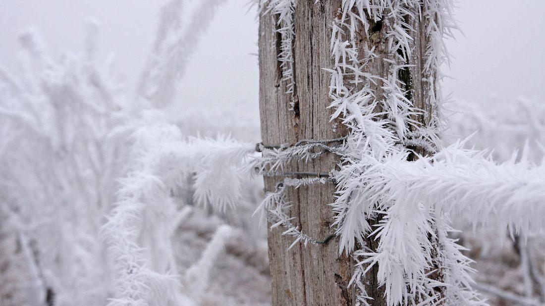 Kälte-Schock nach Hitzewelle: Sogar Frost ist möglich!