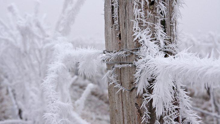 Minus 11 Grad: Es wird extrem kalt in Deutschland!