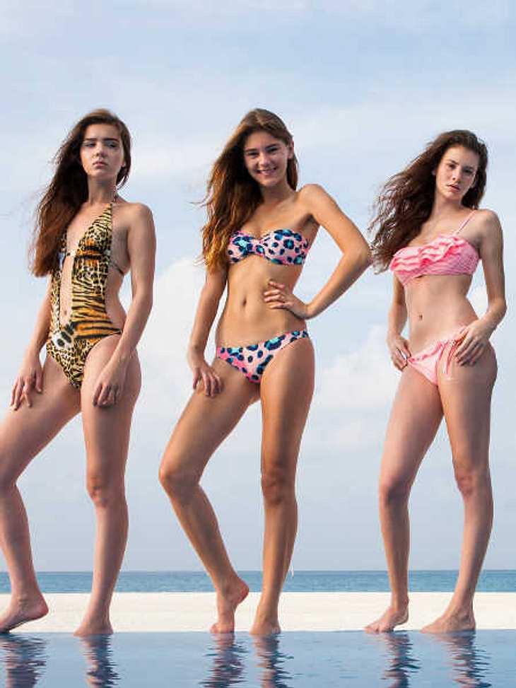 Auf Facebook sind Nathalie, Stefanie und Betty (v.l.) die klaren Favoritinnen
