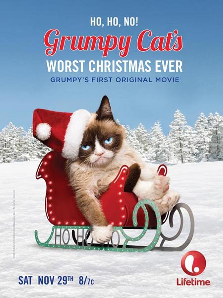 Klar: Grumpy Cat hasst Weihnachten