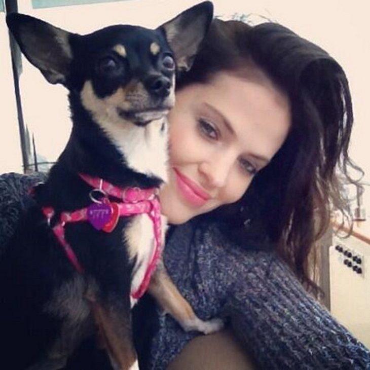 3800 Euro hat Hana Nitsche als Finderlohn für ihren Hund ausgeschrieben.