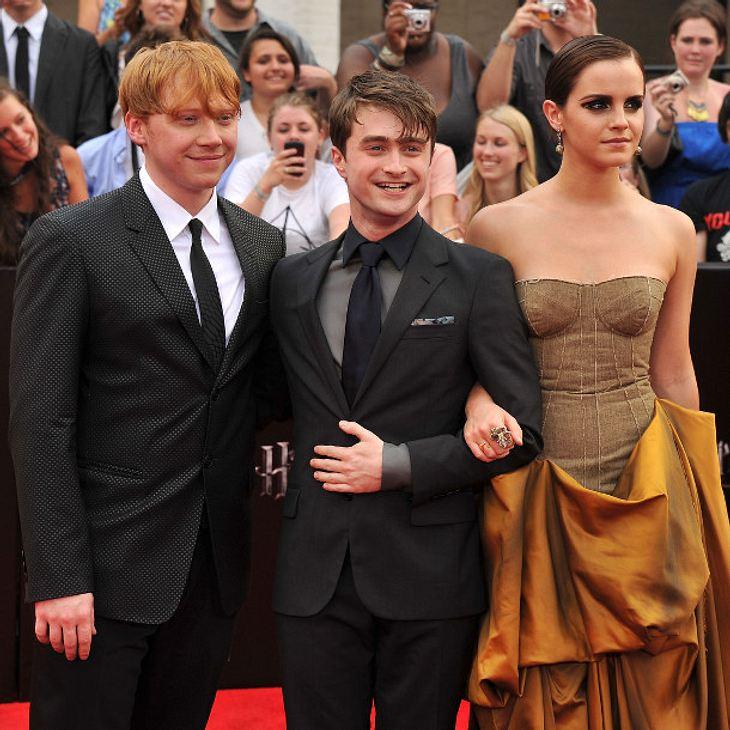 Sind Daniel Radcliffe und seine Kollegen bald wieder vereint?