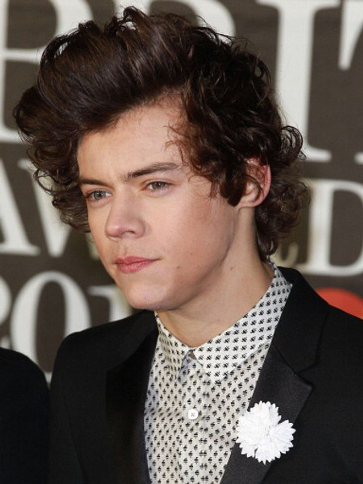 Harry Styles: Werden er und Kesha bald ein Paar?