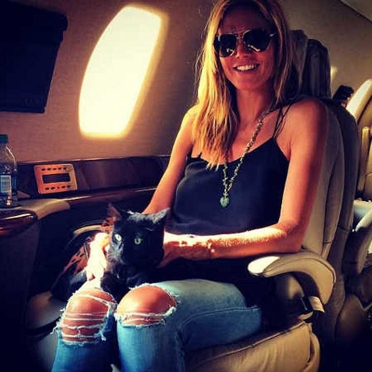 Heidi Klum: Mit Kater im Flugzeug!