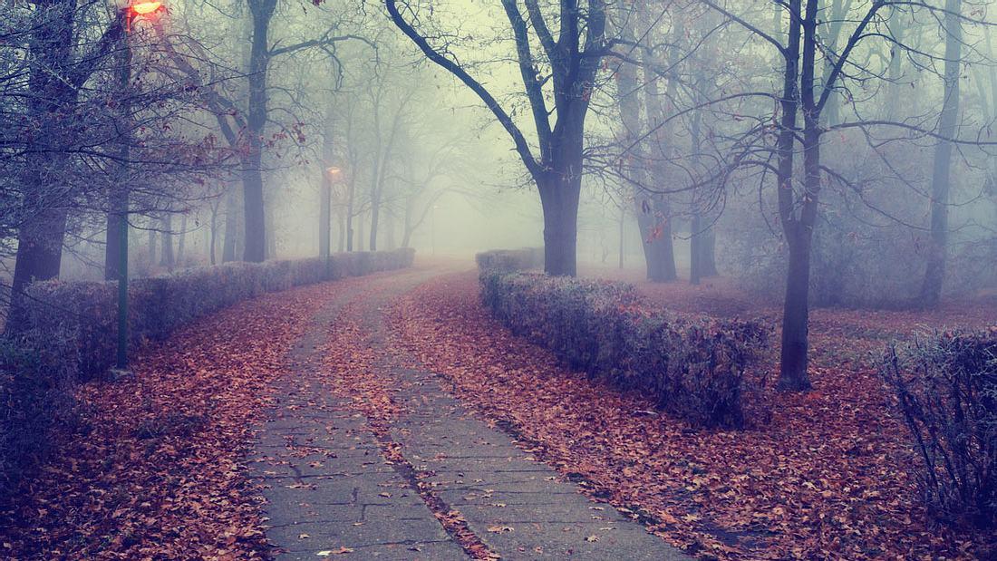 Kälte-Schock: Der Herbst kommt!