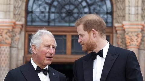 Charles und Harry - Foto: imago images / ZUMA Press