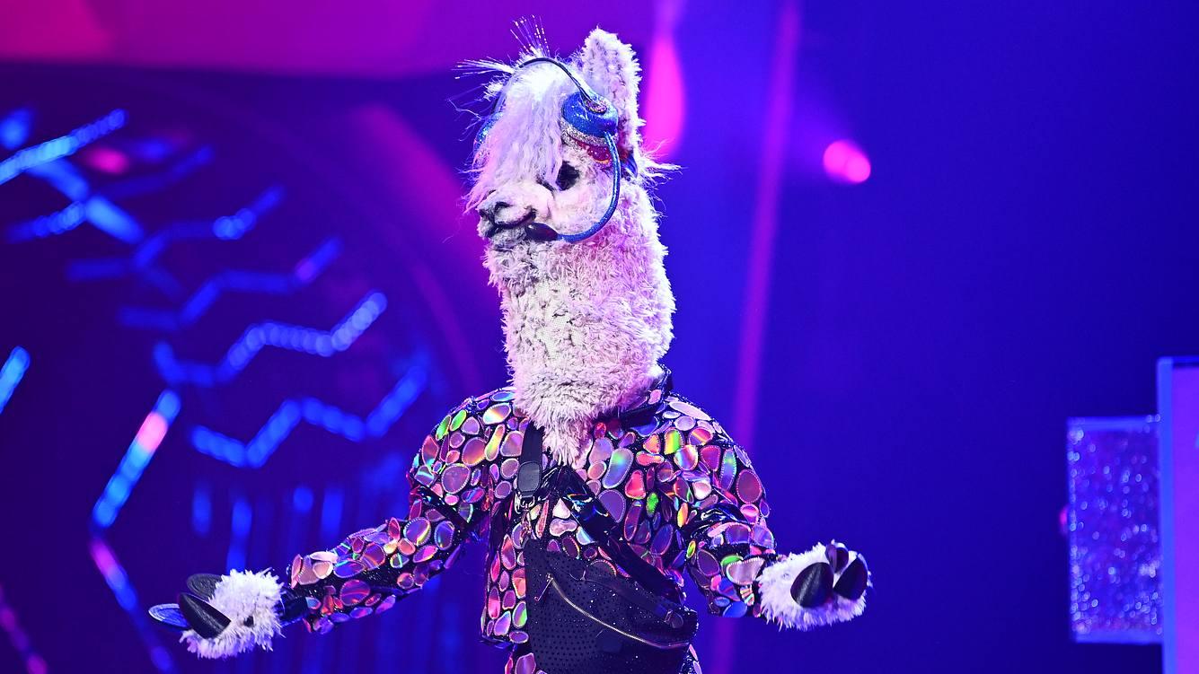 Sylvie Meis versteckt sich unter dem Alpaka-Kostüm
