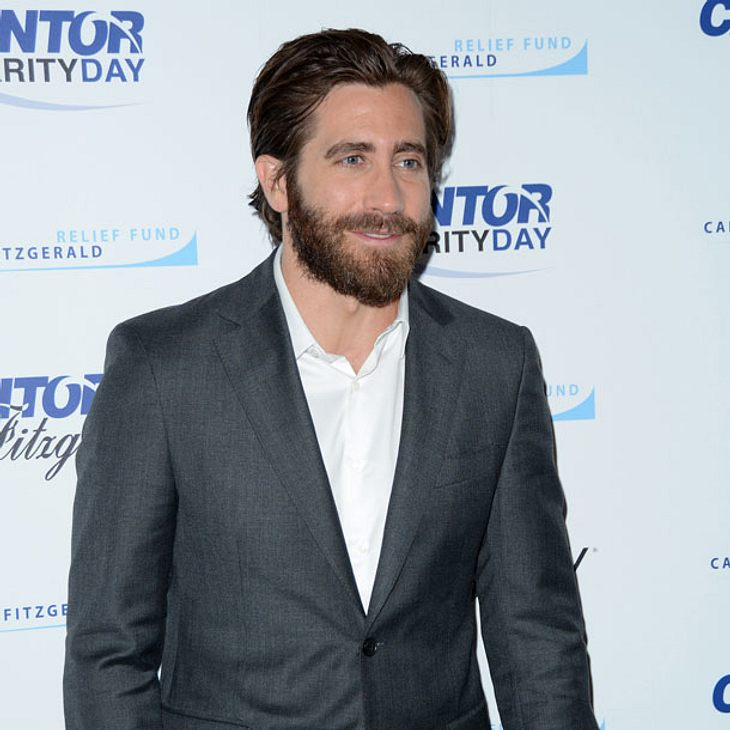 Jake Gyllenhaal will Dakota Johnson zurück!
